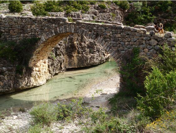 El puente del molino sobre el Vero joven