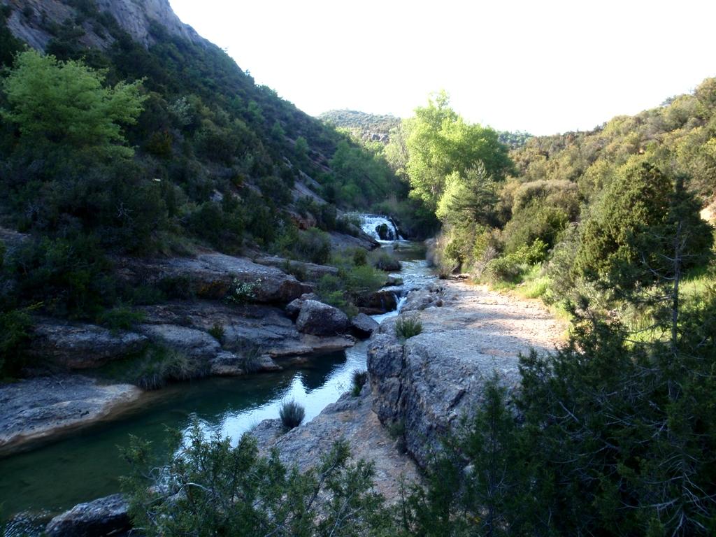 El Río Formiga