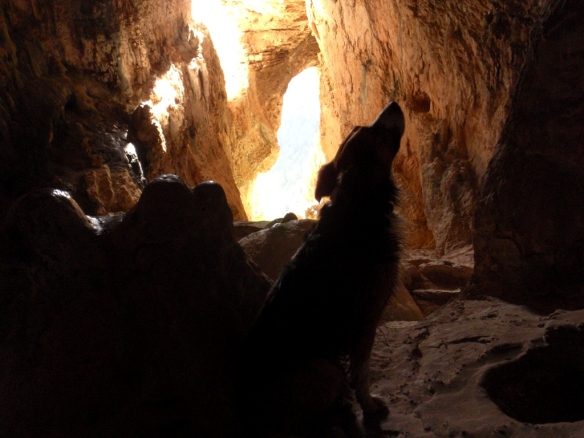 La Cueva de Lucien Briet