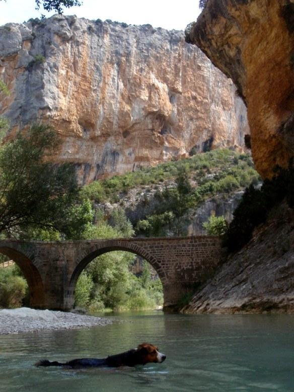El Puente de Villacantal