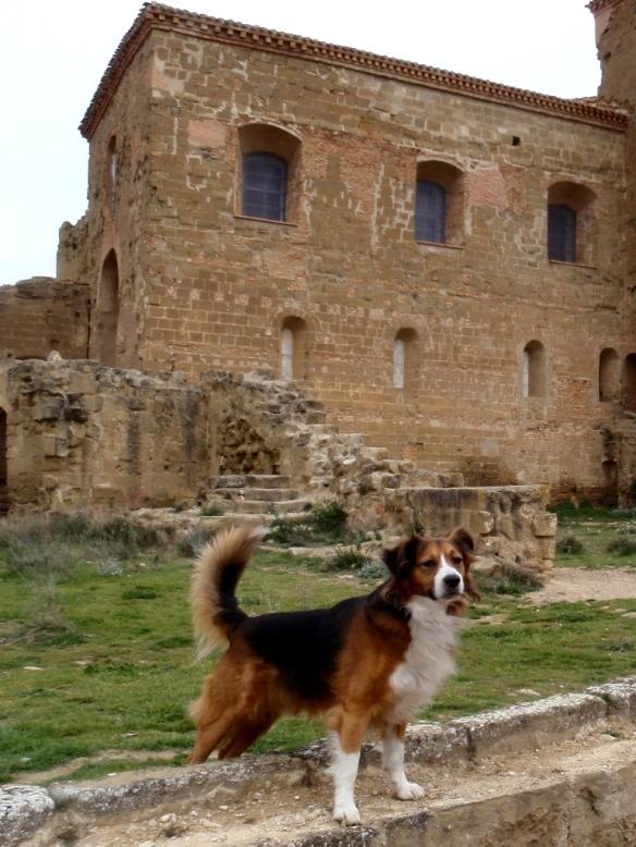 El Castillo de Montearagón