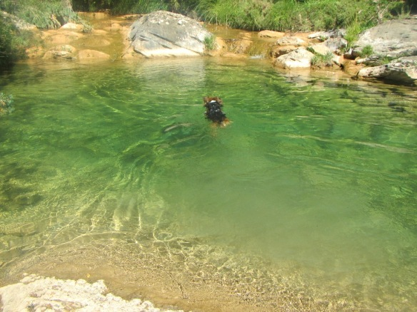 La Poza del Flumen cerca de la confluencia