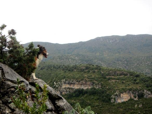 Las vistas hacia el Barranco de la Virgen