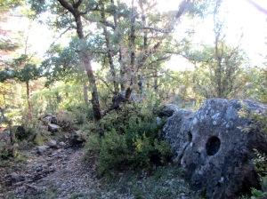 El sendero que baja a los Campos de Llorente