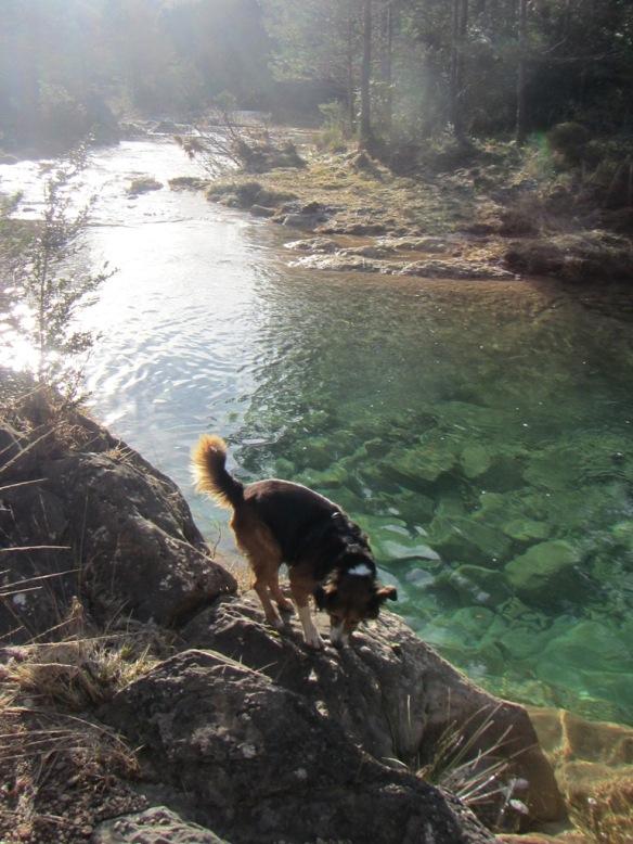 Pozas vírgenes de aguas cristalinos en el Río Flumen, Barranco Barón y de la Tosca