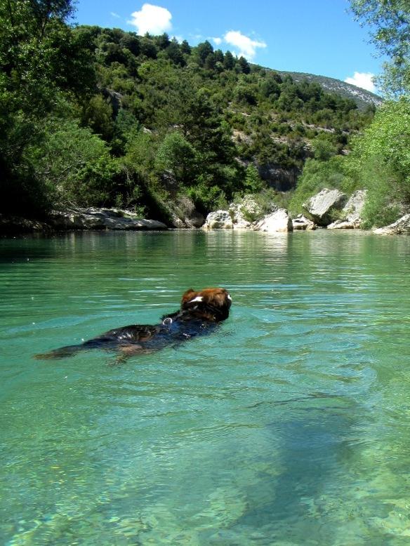 Robert y el Río Alcanadre