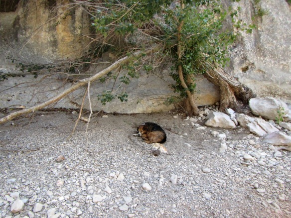 En la Fuente de los Arenales