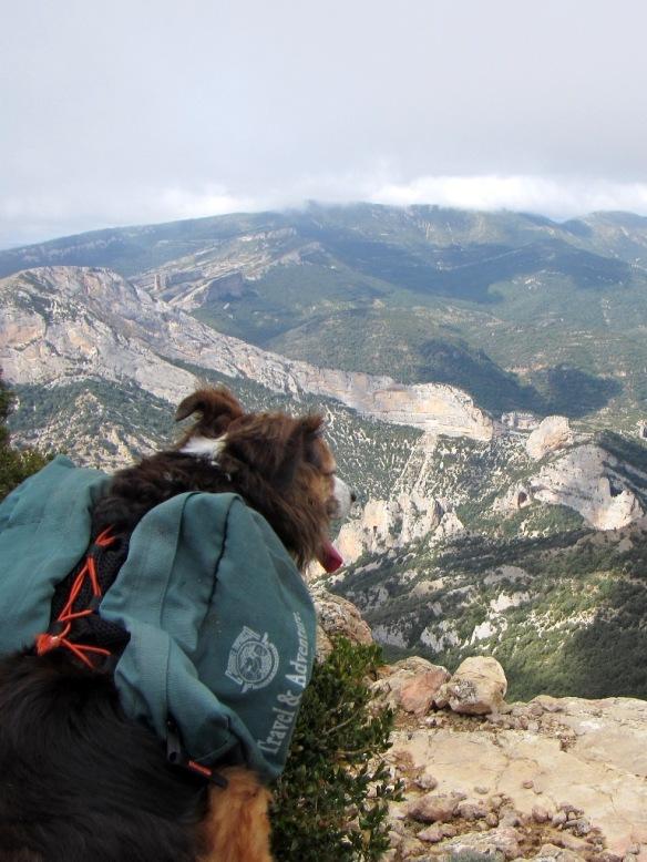 Vistas desde la Cima del Pico de Mondinero
