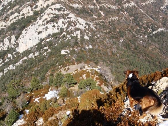 El Pico de Mondinero