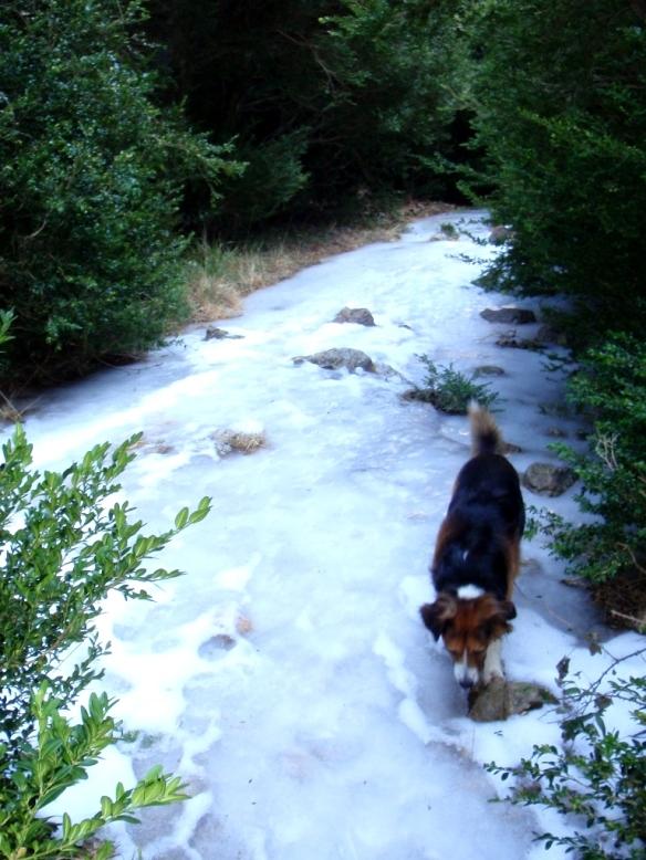 El sendero por las Gargantas de Fabana en invierno