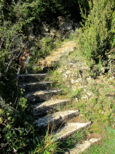 Las escaleras que ascienden al Refugio de Santa María de Belsué