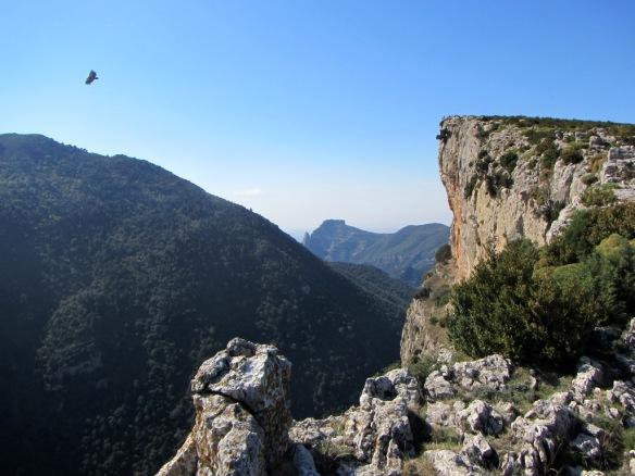 Las vistas del Escalar