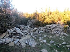 Ruinas entre el boj