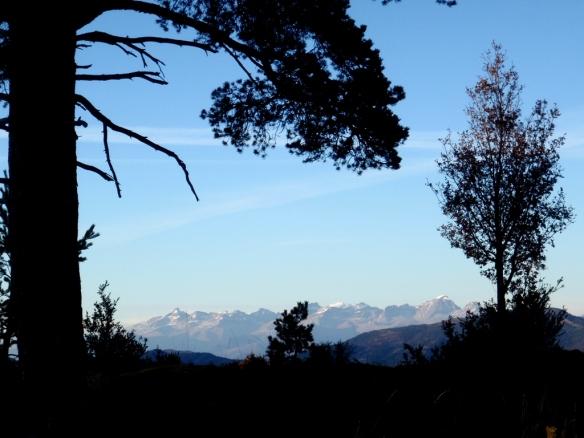 Buenas vistas a la Collarada