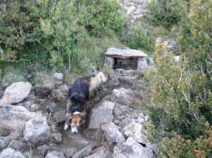 La Fuente Charrachón