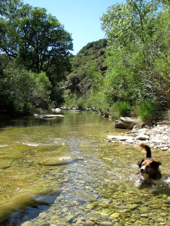 El Río Isuala cerca de Alberuela