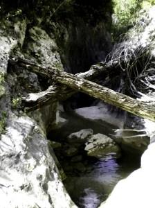 La entrada a la Carruaca