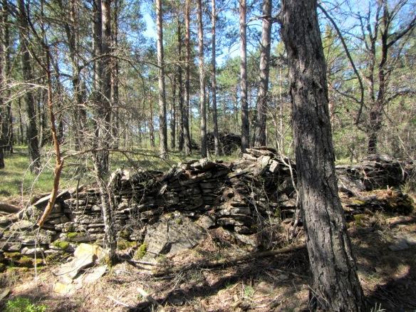 Las piedras apiladas y los muretes en el pinar