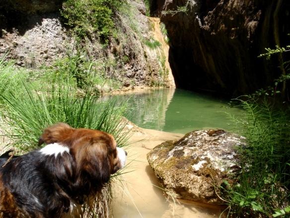 El Barranco Foroñón
