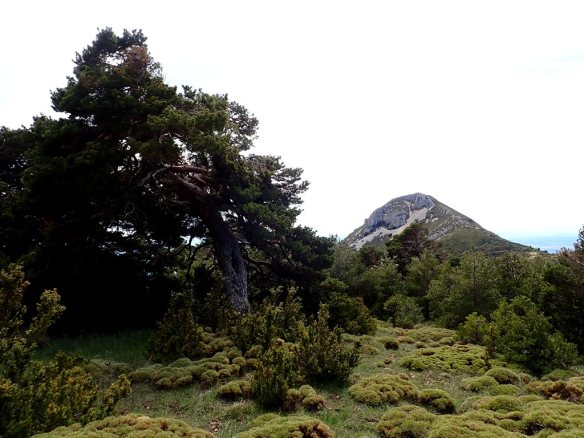 En la cara sur del Pico Gratal