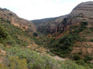 El Barranco Rosico