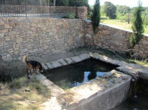 La fuente de San Pelegrín