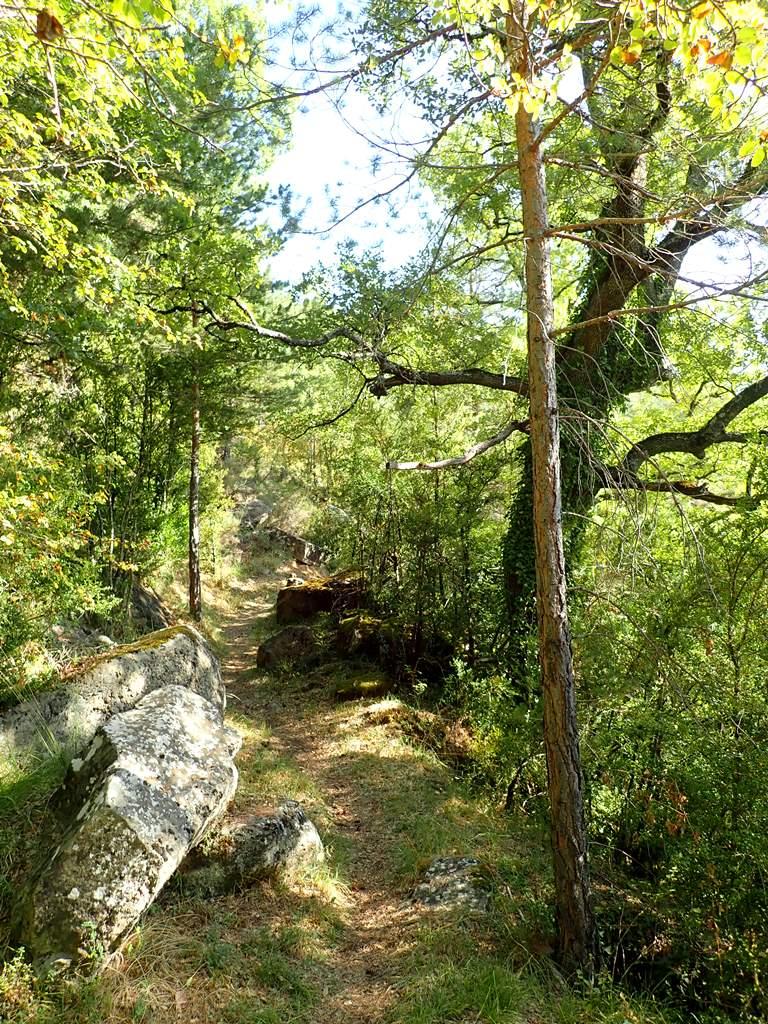 La senda hacia Ibirque