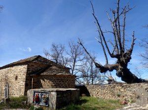 El cementerio de la Ermita San Román